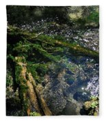 Clearwater Falls Series 17 Fleece Blanket
