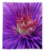 Clematis Blossom Upclose Fleece Blanket