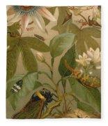 Clematis Cicada And Beetles 1894 Fleece Blanket
