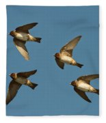 Cliff Swallows Flying Fleece Blanket