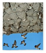 Cliff Swallows Returning To Nests Fleece Blanket