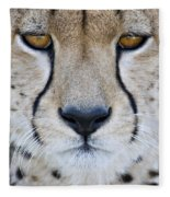 Close-up Of A Cheetah Acinonyx Jubatus Fleece Blanket