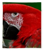 Close Up Of A Gorgeous  Green Winged Macaw Parrot. Fleece Blanket