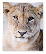 Close-up Of A Lioness Panthera Leo Fleece Blanket