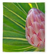 Close Up Of A Protea In Bud Fleece Blanket