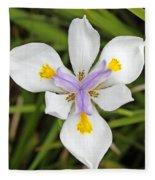 Close Up Of An Iris Fleece Blanket