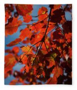 Close Up Of Bright Red Leaves With Blue Fleece Blanket