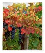 Close-up Of Cabernet Sauvignon Grapes Fleece Blanket