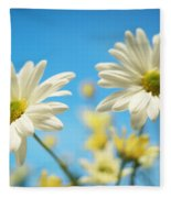 Close-up Of Daisies Against A Blue Fleece Blanket