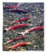 Close-up Of Fish In Water, Sockeye Fleece Blanket