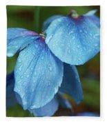 Close-up Of Himalayan Poppy Flowers Fleece Blanket
