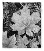 Close Up Of Leaves Fleece Blanket