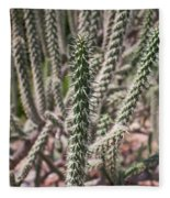 Close Up Of Long Cactus With Long Thorns  Fleece Blanket