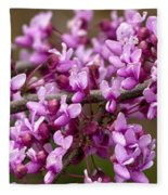 Close-up Of Redbud Tree Blossoms Fleece Blanket