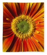 Close Up Yellow Orange Mum Fleece Blanket