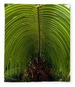 Closeup Of A Palm Tree Leaf Fleece Blanket