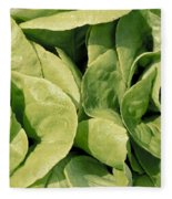 Closeup Of Boston Lettuce Fleece Blanket
