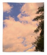 Cloud Slide Fleece Blanket