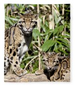 Clouded Leopards Fleece Blanket