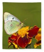 Clouded Sulphur Butterfly Fleece Blanket
