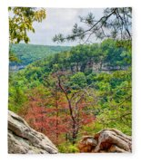 Cloudland Canyon State Park Georgia Fleece Blanket