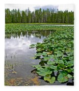 Clouds Among The Lily Pads In Swan Lake In Grand Teton National Park-wyoming  Fleece Blanket