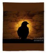 Cloudy Evening Fleece Blanket