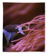 Clown Fish In Amoeba Fleece Blanket