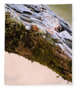 Club Of Moss Abstract Fleece Blanket