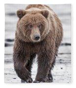 Coastal Brown Bear A Walk On The Beach Fleece Blanket