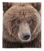 Coastal Brown Bear Closeup Fleece Blanket
