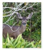 Coastal Deer Fleece Blanket