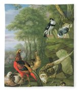 Cock Pheasant Hen Pheasant And Chicks And Other Birds In A Classical Landscape Fleece Blanket