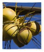 Coconut 1 Fleece Blanket