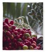 Cocos Nucifera - Niu Mikihilina - Palma - Niu - Arecaceae -  Palmae Fleece Blanket