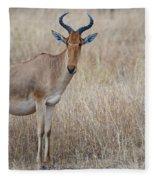 Cokes Hartebeest Fleece Blanket