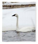 Cold Swim Fleece Blanket