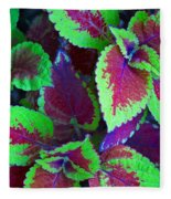 Coleus Color Fleece Blanket