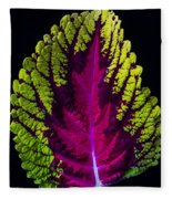 Coleus Leaf Fleece Blanket
