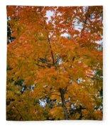 Color Of Fall Fleece Blanket