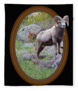 Colorado Bighorn Fleece Blanket