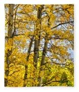 Colorado Fall Aspens 2 Fleece Blanket