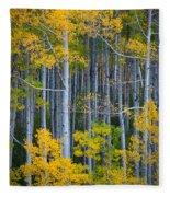Colorado Fall Color Fleece Blanket