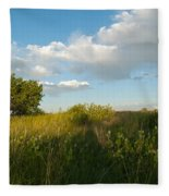 Colorado June Evening Landscape Fleece Blanket