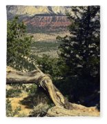 Colorado Plateau Fleece Blanket
