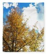 Colorado Sky Fleece Blanket