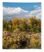 Colorado Urban Autumn Landscape Fleece Blanket