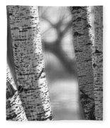 Colorado White Birch Trees In Black And White Fleece Blanket