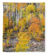 Colorful Autumn Forest In The Canyon Of Cottonwood Pass Fleece Blanket