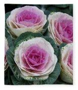 Colorful Cabbage  Fleece Blanket